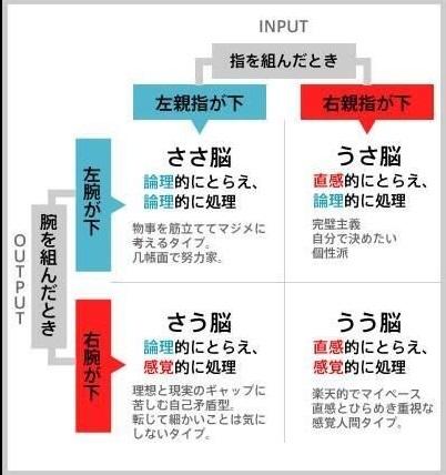 脳チャート.jpg