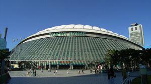 Tokyo_Dome_20080101.jpg